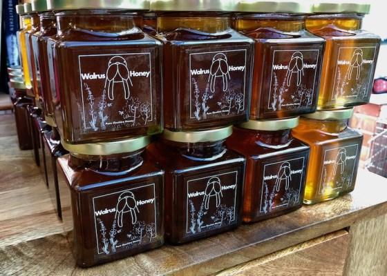 Walrus Honey