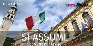 Concorso di Treviso. Il bando
