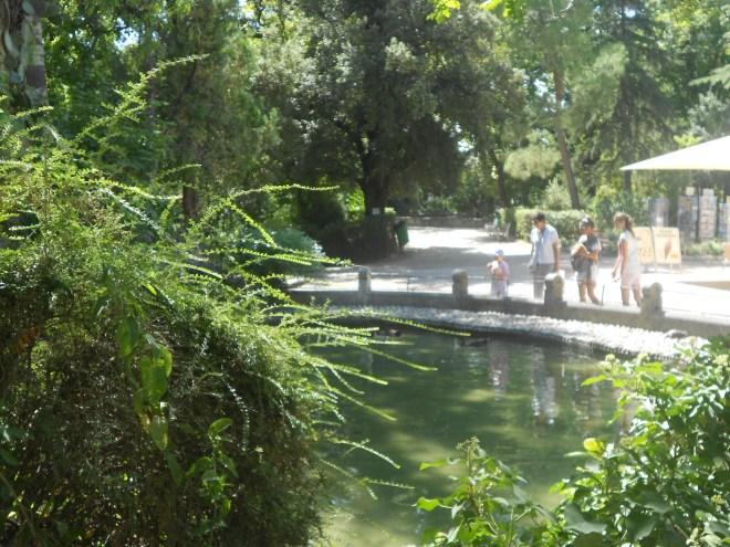 Rocher des Doms Park Avignon