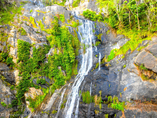 Waterfall Kuranda Scenic Railway Queensland Australia