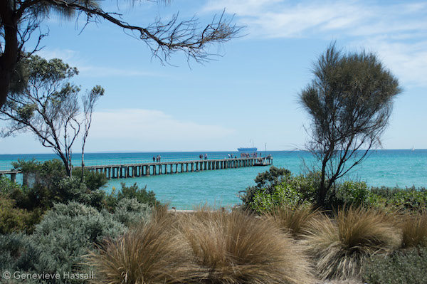 Dromana mornington peninsula