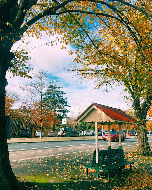 Heathcote Goldfields Victoria