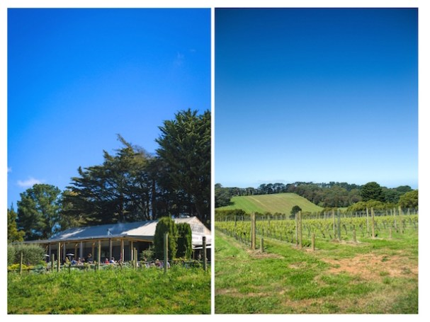 T'Gallant Winery Mornington Peninsula