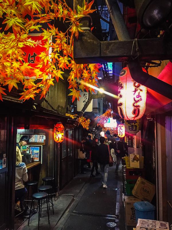 Piss Alley Shinjuku Tokyo