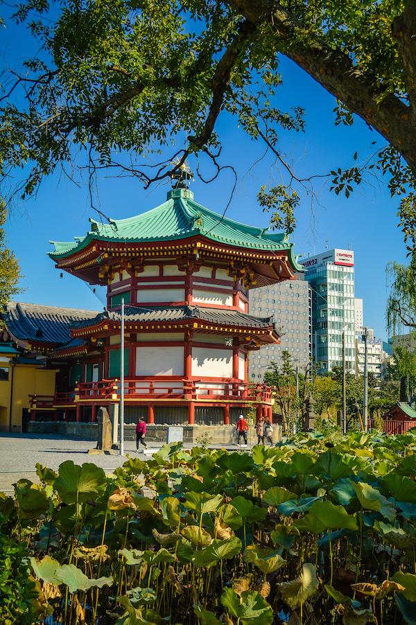 benzaiten temple on Shinobazu Pond Lotus Ueno Park Tokyo