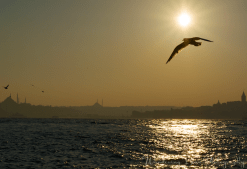 The low angle of the sun creates a golden glow above the Bosphorus.