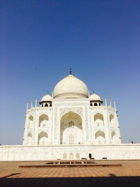 image of taj mahal in agra from jawab mahal
