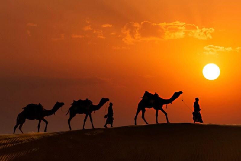 India Beyond Taj Mahal | camels