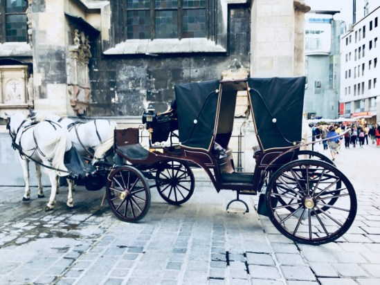 Places to visit in Vienna in 2 days | horse-wagon-vienna-austria