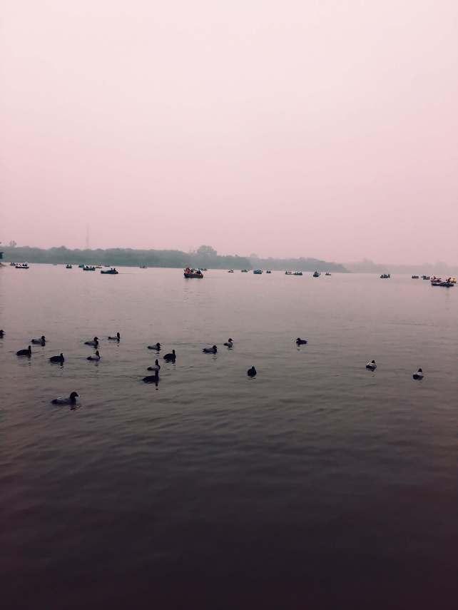 things to do in Chandigarh | Sukhna Lake Chandigarh India