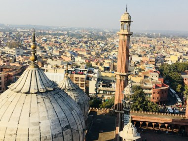View of Delhi with birds on the tomb of Jama Masjid