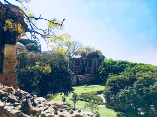 The Hauz Khas Fort
