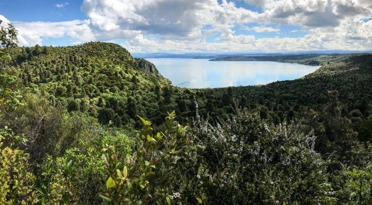lake-taupo-new-zealand