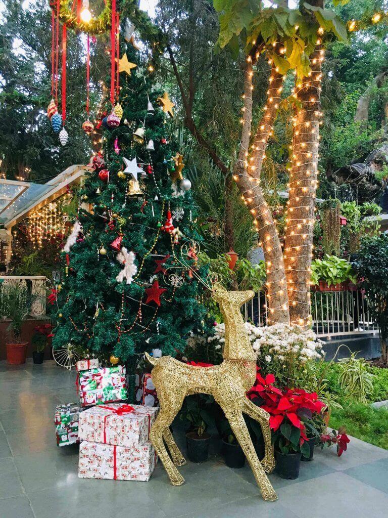 Delhi-Christmas-768x1024 (1)