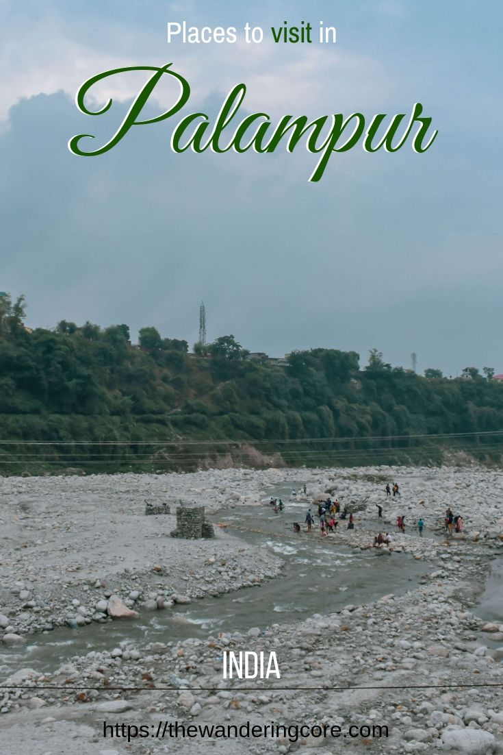 Palampur Tea Gardens   Places to visit in Palamapur   Places to stay in Palampur   Where to stay in Palampur