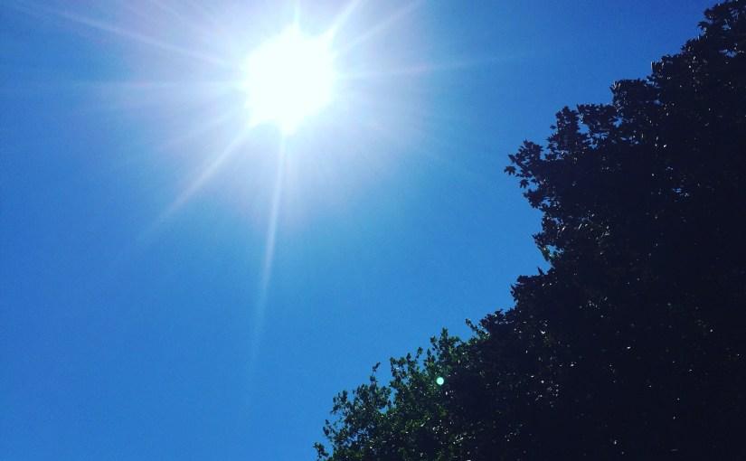 UK Heatwave*