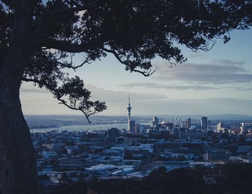 Auckland | Mount Eden | Working Holiday Visum | Nieuw-Zeeland