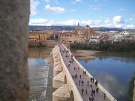 The bridge across the Guadalquivir (from Wadi al Kabir)