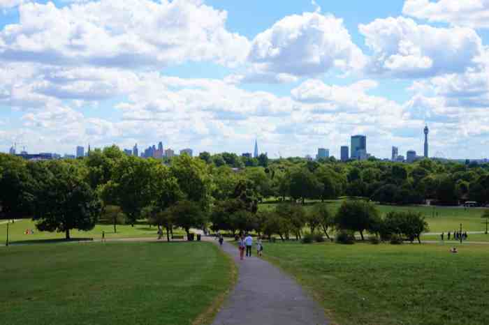 picnic in a london park with a city view primrose hill