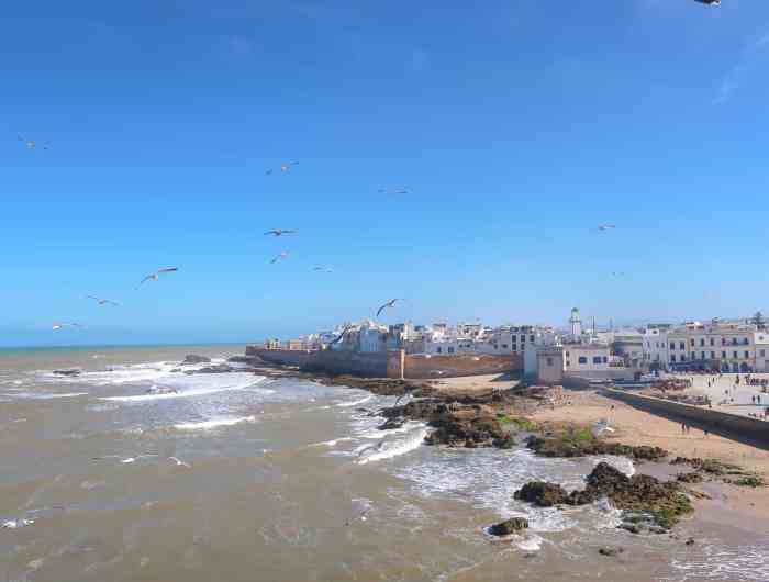 Reasons to visit essaouira morocco