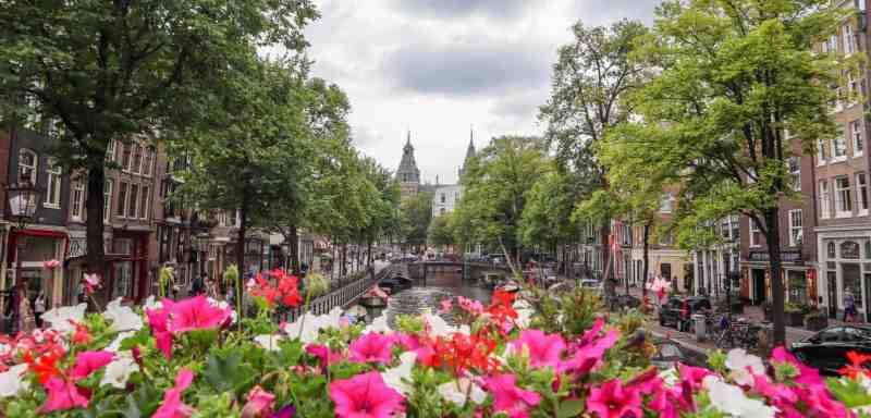 Amsterdam Central to Rijksmuseum
