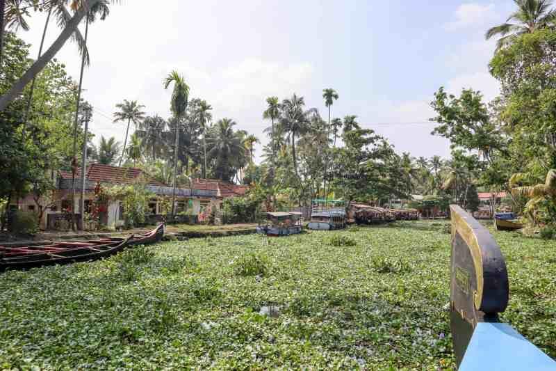 Kerala backwaters | 2 week kerala itinerary