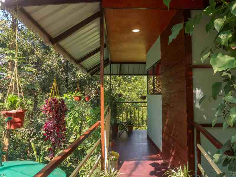 2 week South India itinerary, The Wayside Cottage Munnar Room