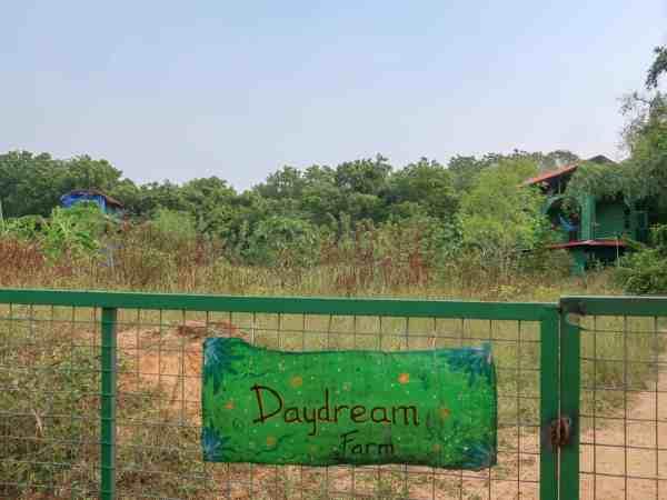 Auroville farm