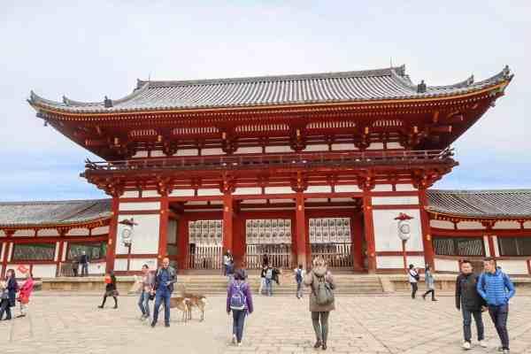 2 week japan itinerary, things to do in nara