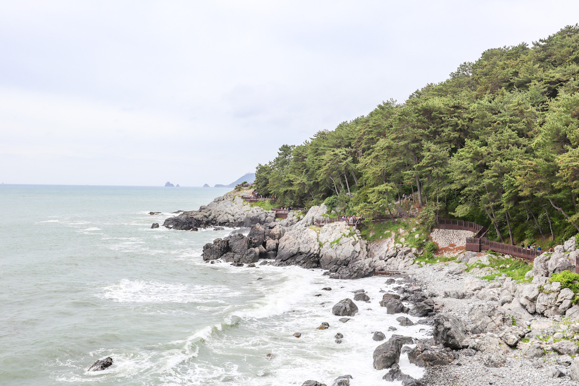Things to do in Busan, Dongbaek Park