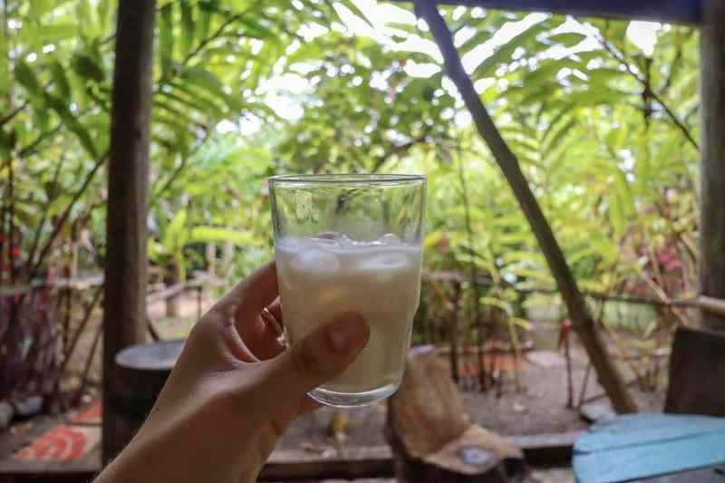 coconut rum at bush bar in dominica | dominica day tours