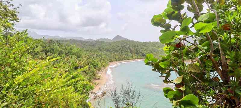 things to do in Dominica