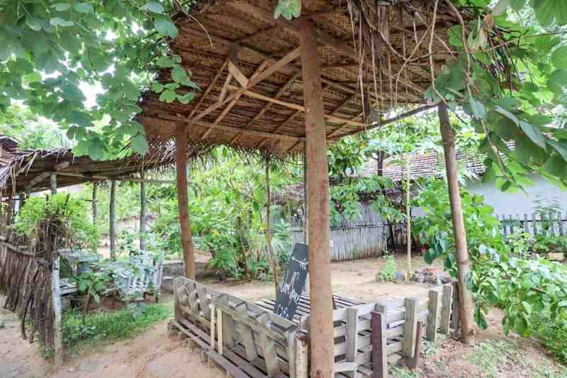 outside garden of Wood Space Cafe in Mirissa | best cafes in mirissa