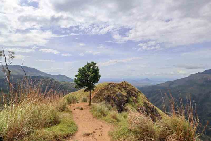 view of the mountains from the top of Little Adams Peak