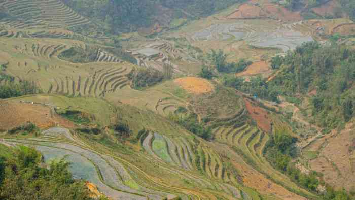 Green Sapa Rice Paddies weather | best places to travel in Asia in July and August