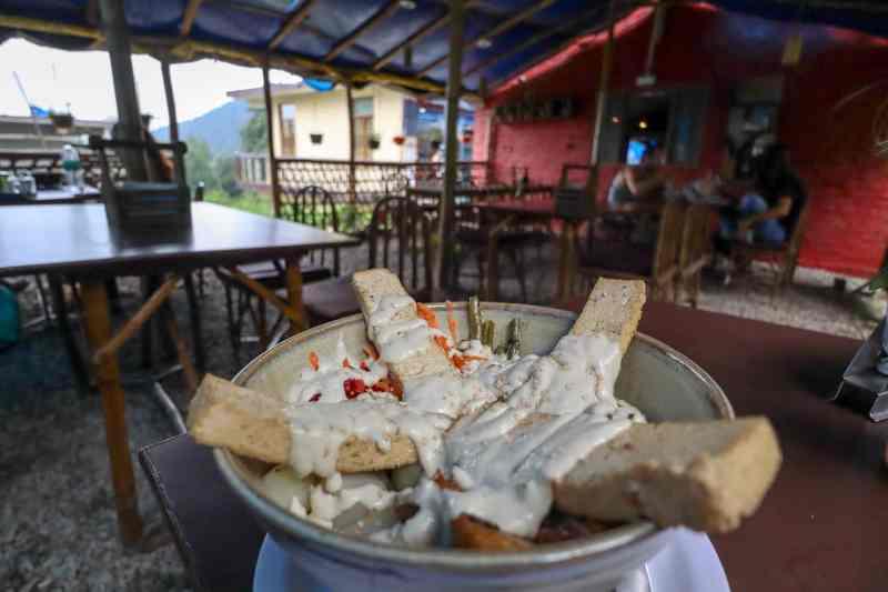 Vegan Buddha Bowl in Bodhi Greens Cafe | things to do in dharamkot