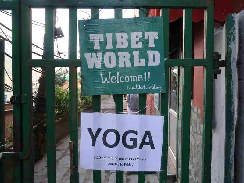 tibet world entrance gate to volunteer with tibetans | things to do in Mcleod Ganj