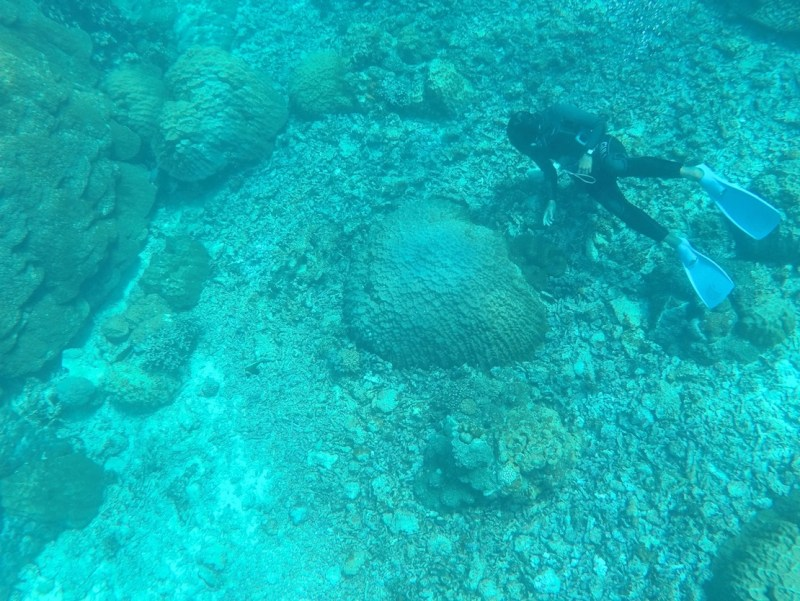 snorkelling in Okinawa | things to do in Miyakojima island