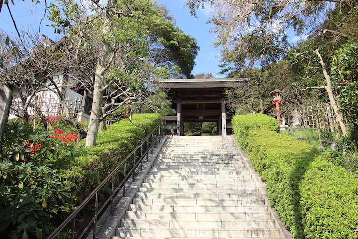Kamakura Japan Temple | best places to travel in Asia December and January