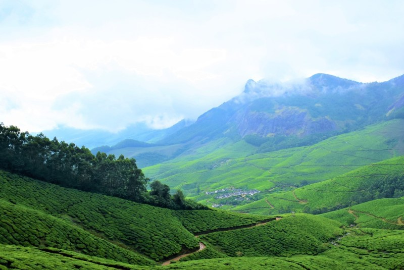 kerala tea plantations | best places to travel in Asia December and January