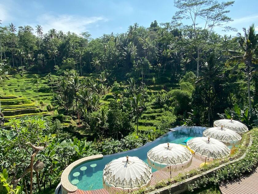 Bali Lombok itinerary, Tis Cafe Ubud Pool and Rice Terraces