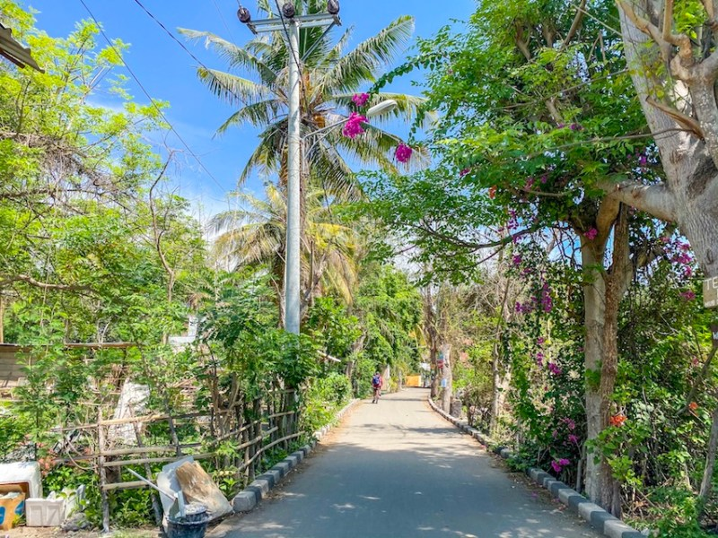 Gili Islands, Gili Air streets and flowers