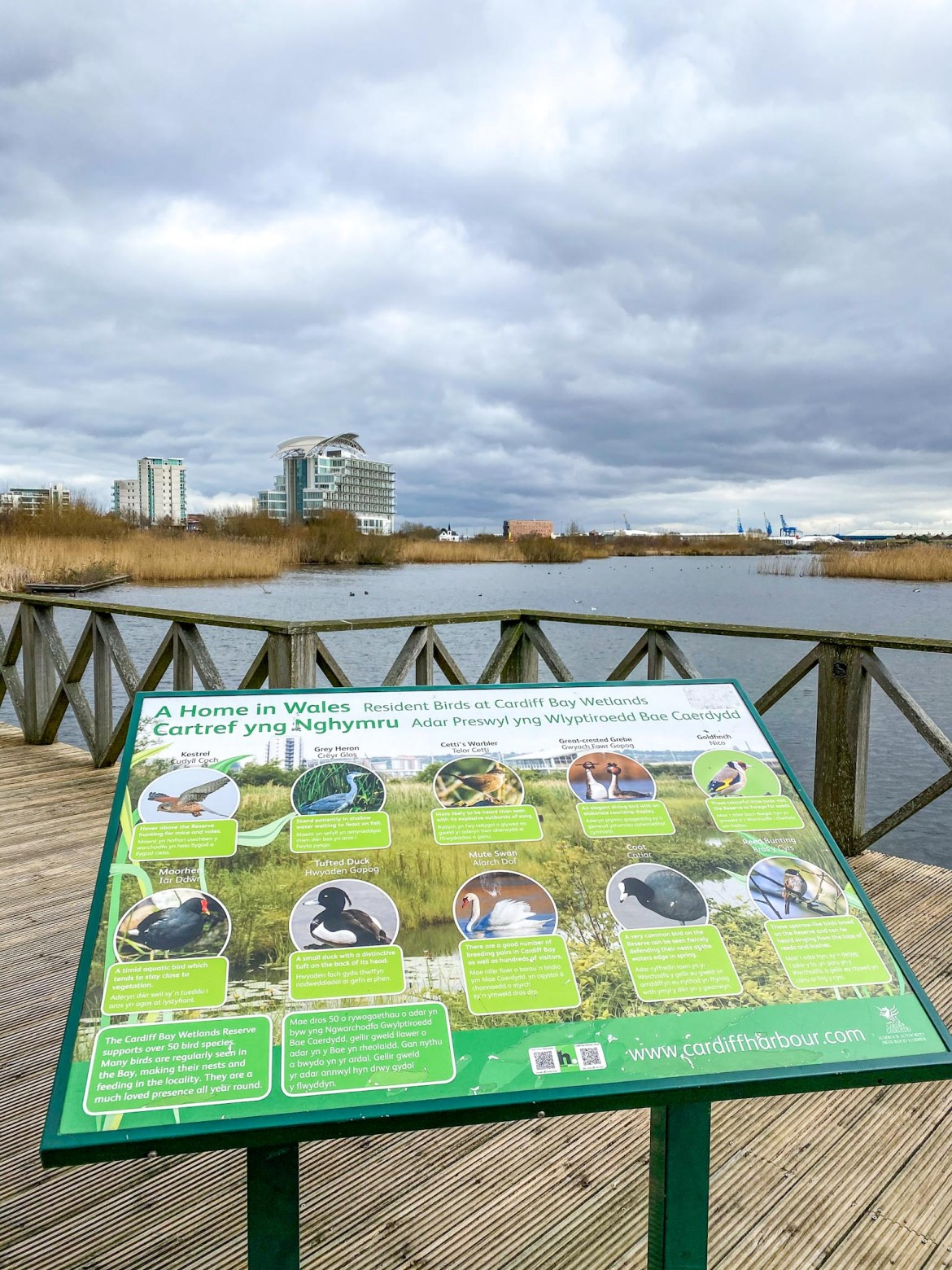 Cardiff Bay Wetlands Reserve Bird Sign