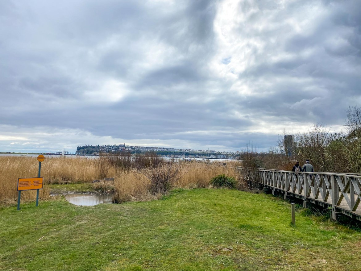 One day in Cardiff, Cardiff Bay Wetlands Reserve Boardwalk view
