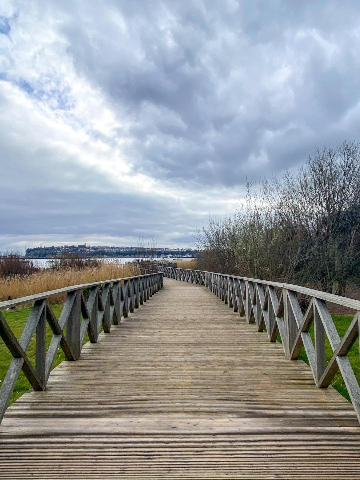Cardiff Bay Wetlands Reserve Boardwalk