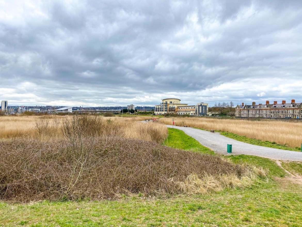 Cardiff Bay Wetlands Reserve Path