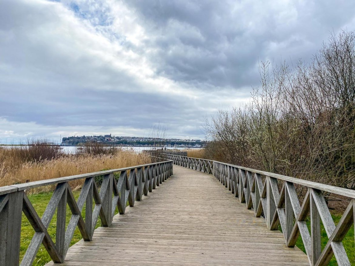 Cardiff day trip from London, Cardiff Bay Wetlands Reserve