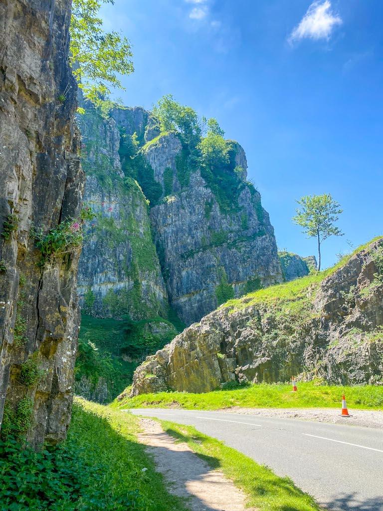 Cheddar Gorge Limestone