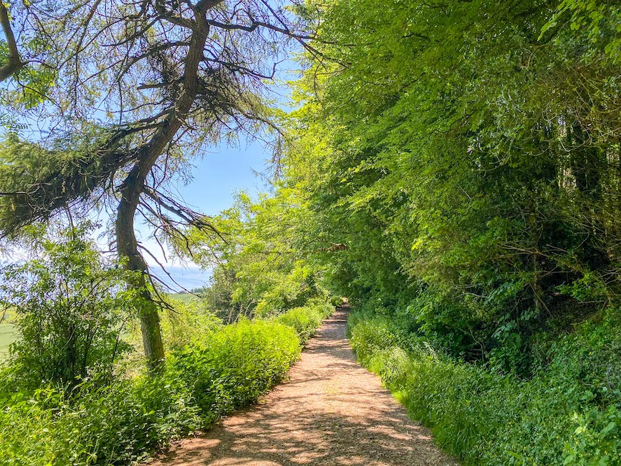 Golden Cap Walk from Langdon Hill