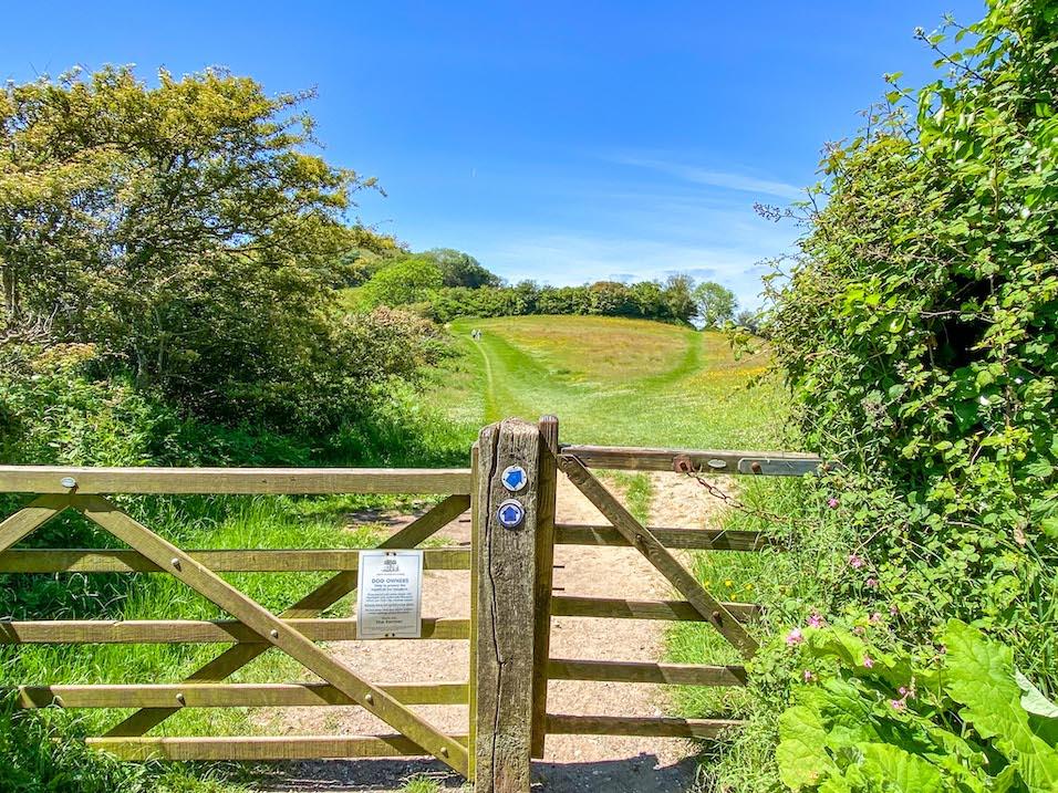 Golden Cap Walk through fields